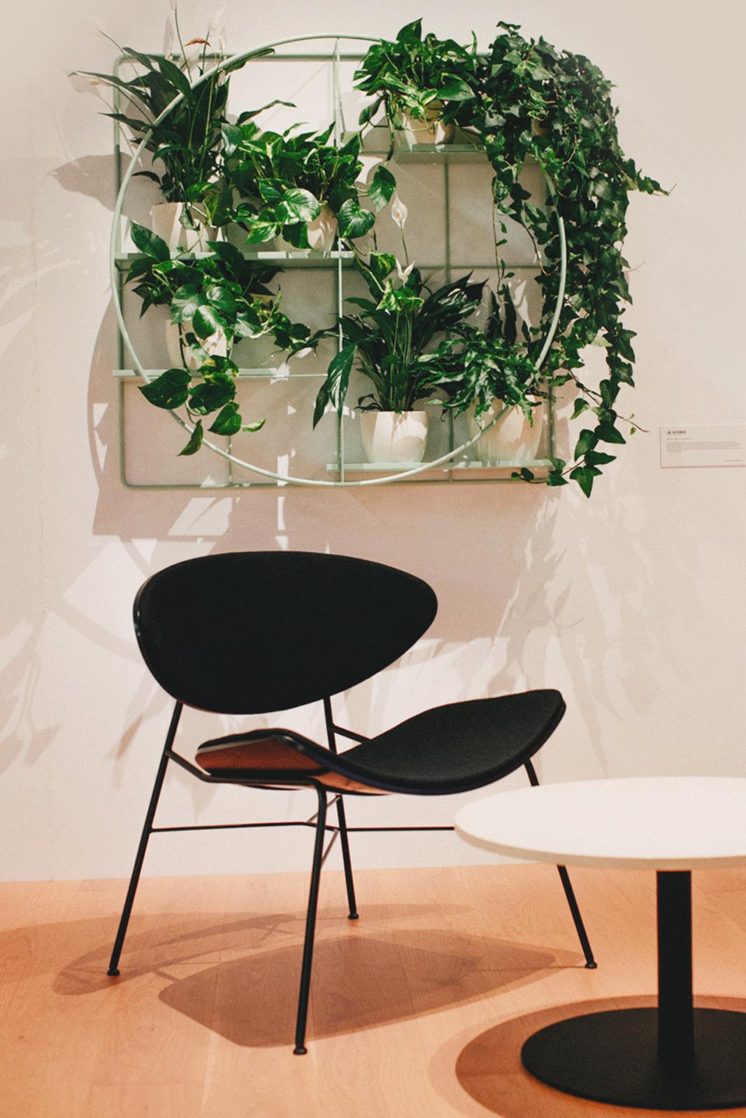 Warsaw Home  – Design Alive